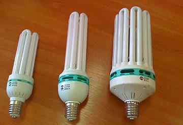 варианты ламп дневного света